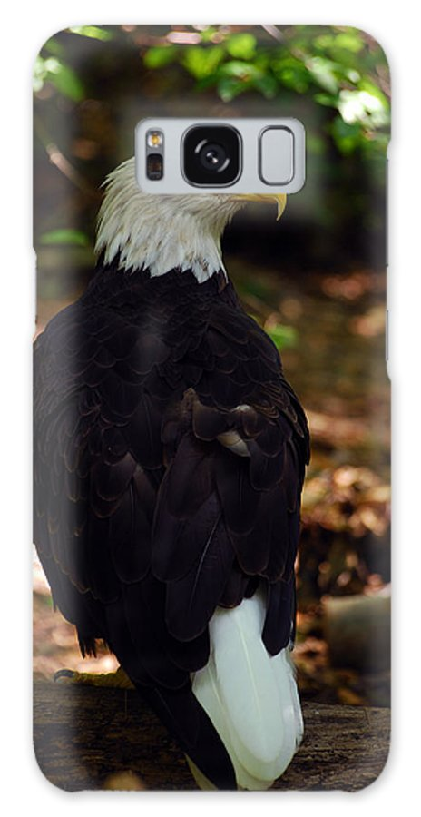 Bald Eagle Galaxy S8 Case featuring the photograph My Serious Side by Lori Tambakis