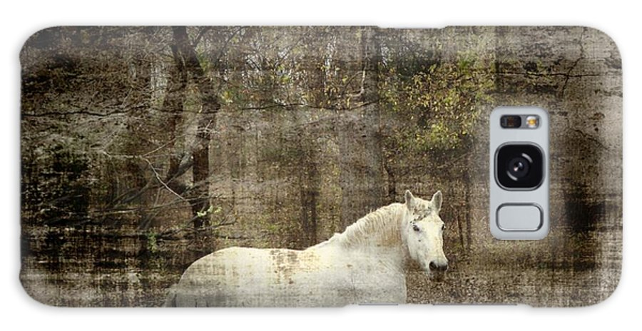 Digital Images Of Horses Galaxy S8 Case featuring the photograph Mystic Forest by Christy Leigh