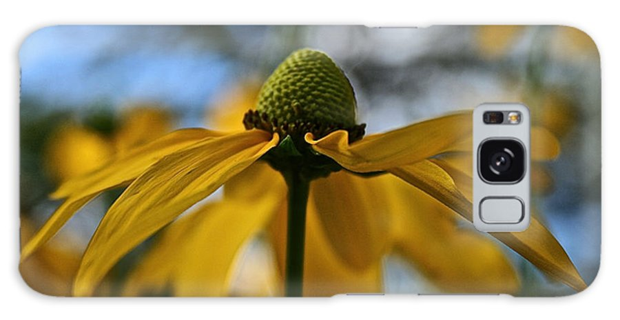 Plant Galaxy S8 Case featuring the photograph New Cone Flower by Susan Herber