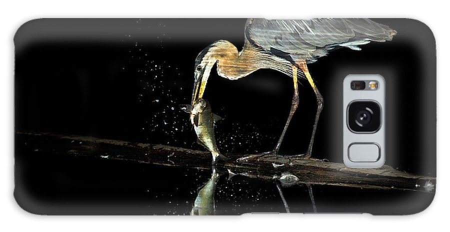 Heron Galaxy S8 Case featuring the photograph Night Fishing by Steven Llorca