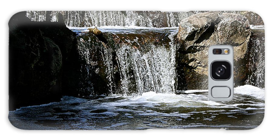 Outdoors Galaxy S8 Case featuring the photograph Normandale Falls by Susan Herber