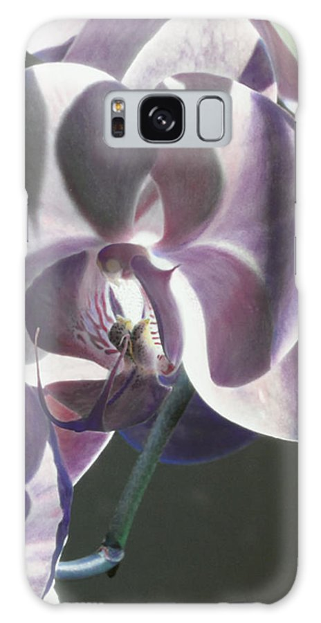 Florals Galaxy S8 Case featuring the photograph Orchid by Linda Dunn