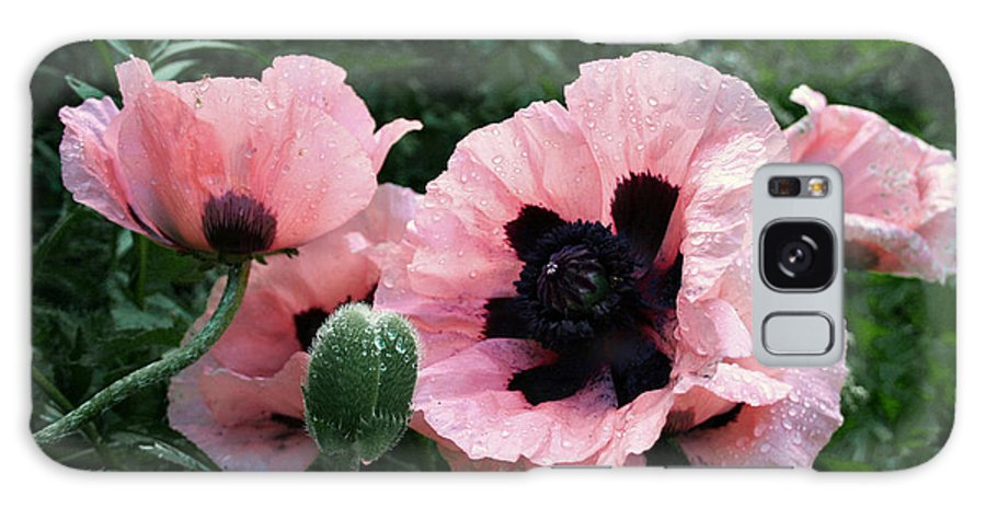 Flowers Galaxy S8 Case featuring the photograph Oriental Poppies by Barbara McMahon