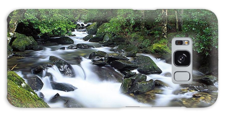 Creek Galaxy S8 Case featuring the photograph Owengarriff River, Killarney National by Richard Cummins
