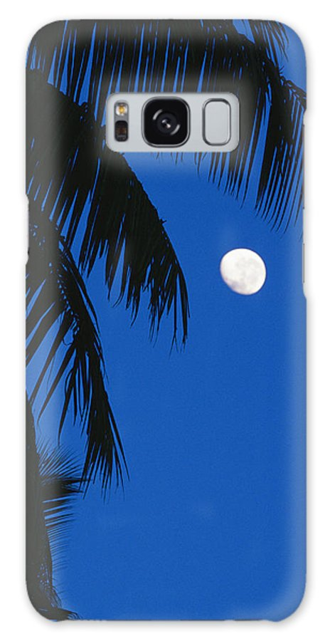Pacific Islands Galaxy S8 Case featuring the photograph Palm Tree Silhouetted Against The Sky by Mark Cosslett