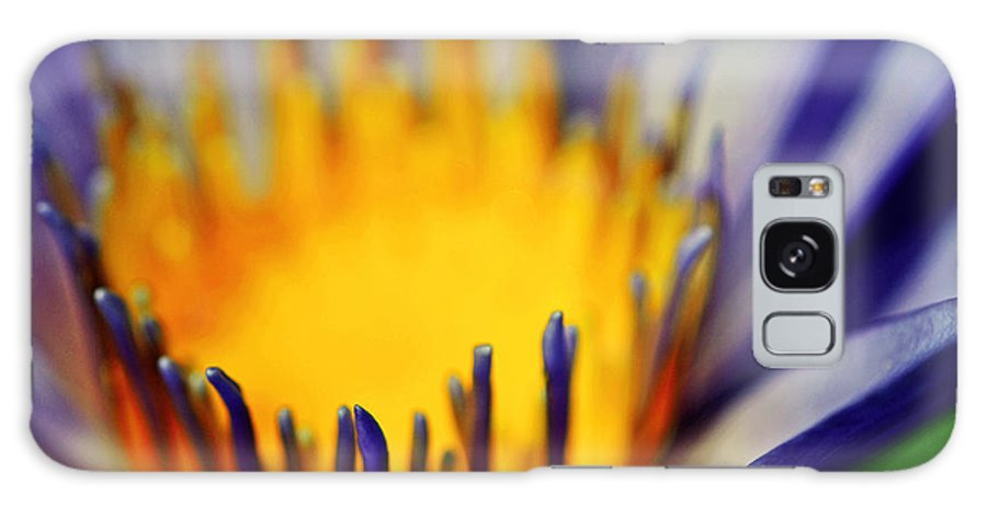 Flower Galaxy S8 Case featuring the photograph Passion Is Energy by Melanie Moraga