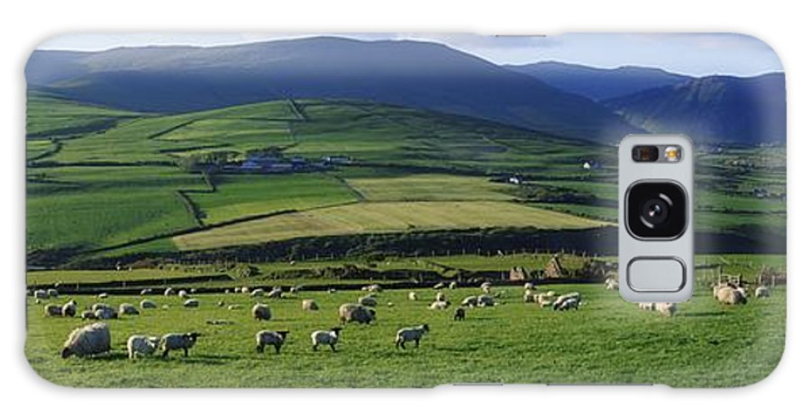 Anascaul Galaxy S8 Case featuring the photograph Pastoral Scene Near Anascual, Dingle by The Irish Image Collection