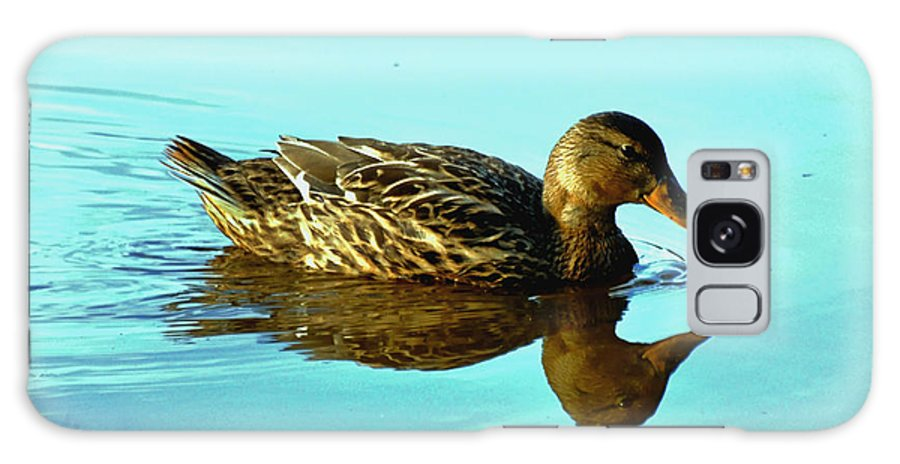 Paul Lyndon Phillips Galaxy S8 Case featuring the photograph Peaceful Duck - 0993c2502e by Paul Lyndon Phillips