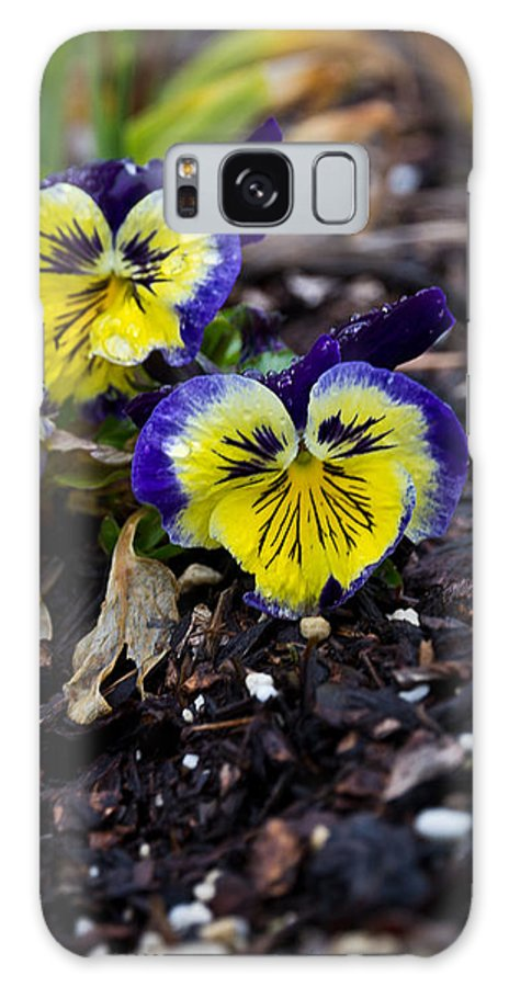 Flowers Galaxy S8 Case featuring the photograph Personality by James Begley