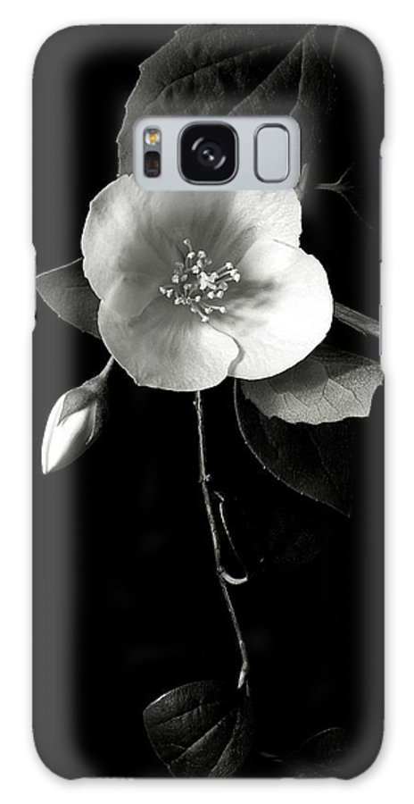 Flower Galaxy Case featuring the photograph Philadelphus In Black And White by Endre Balogh