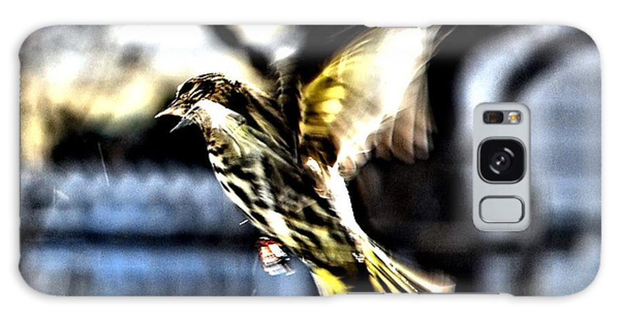 Pine Siskins Galaxy S8 Case featuring the digital art Pine Siskin In Flight by Don Mann