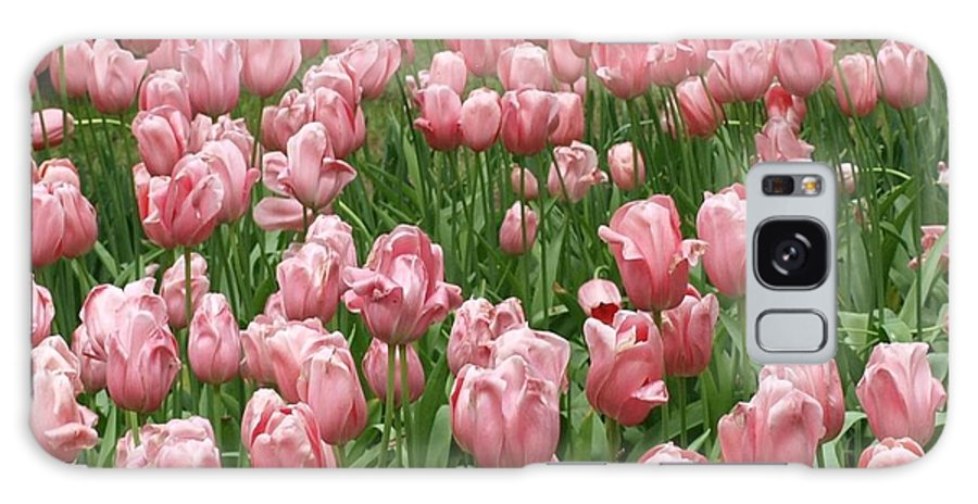 Flowers Galaxy S8 Case featuring the photograph Pink Tulips 2 by Larry Krussel