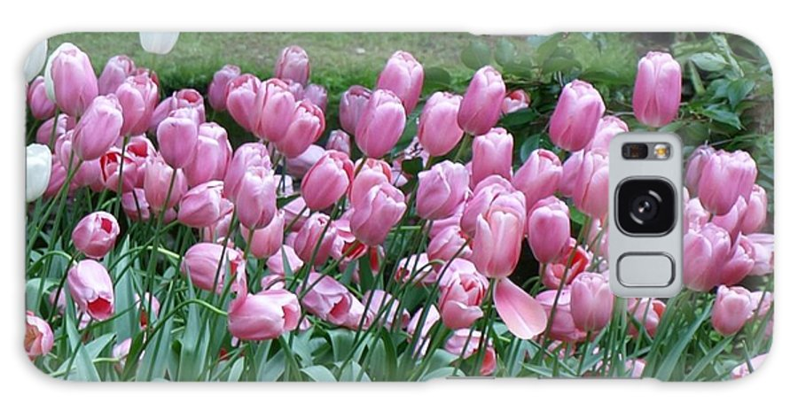 Flowers Galaxy S8 Case featuring the photograph Pink Tulips 3 by Larry Krussel