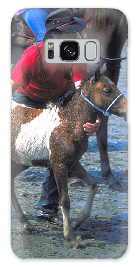 Man Galaxy S8 Case featuring the photograph Pony Handler On Assateague by Carl Purcell