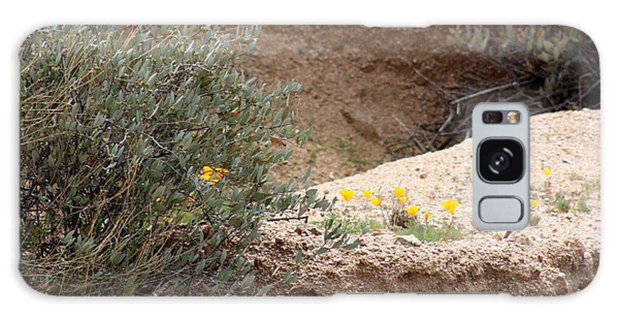 Arizona Galaxy S8 Case featuring the photograph Poppies And Rocks by Kim Galluzzo Wozniak