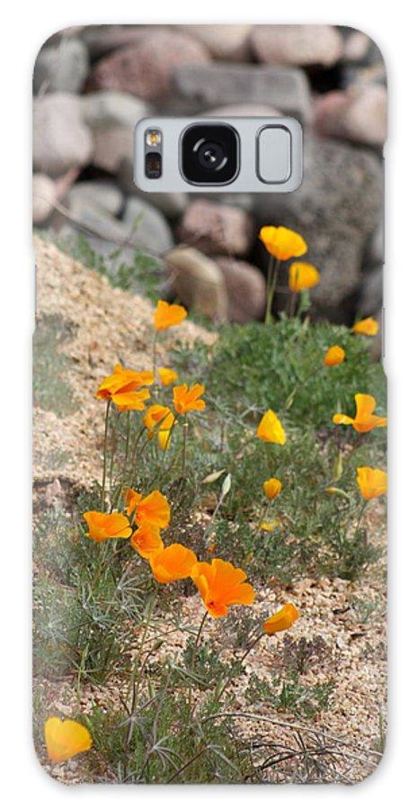 Poppies Galaxy S8 Case featuring the photograph Poppies N River Rocks by Kim Galluzzo Wozniak