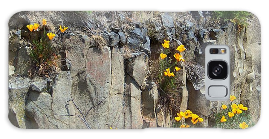Poppies Galaxy S8 Case featuring the photograph Poppies On The Cliff by Charles Robinson