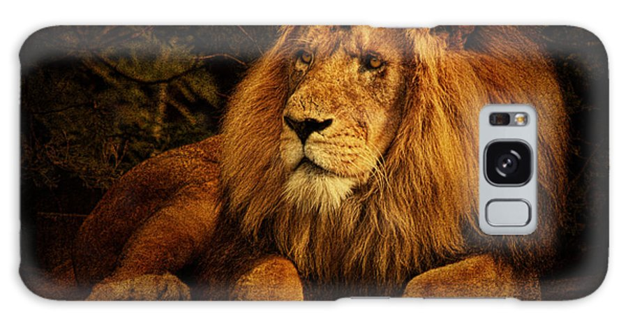 Lion Galaxy S8 Case featuring the photograph Pragmatism by Andrew Paranavitana