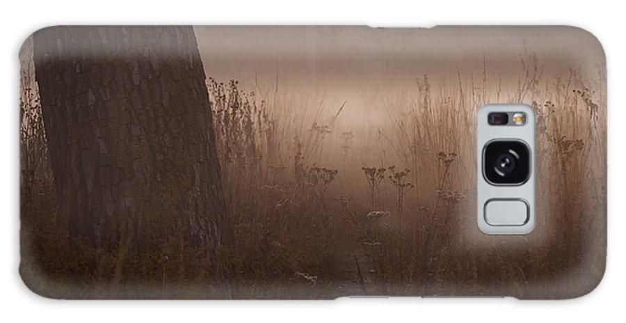 Tree Galaxy S8 Case featuring the photograph Prairie Pre Dawn by Steve Gadomski