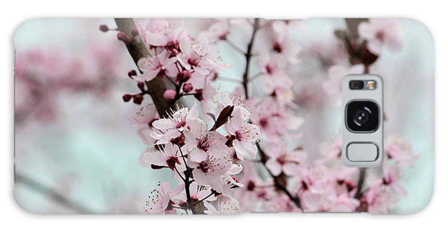 Pink Galaxy S8 Case featuring the photograph Pretty Pink Flowering Tree by P S