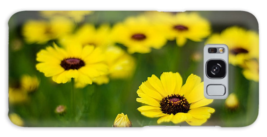Flower Galaxy S8 Case featuring the photograph Pretty Yellow by Syed Aqueel