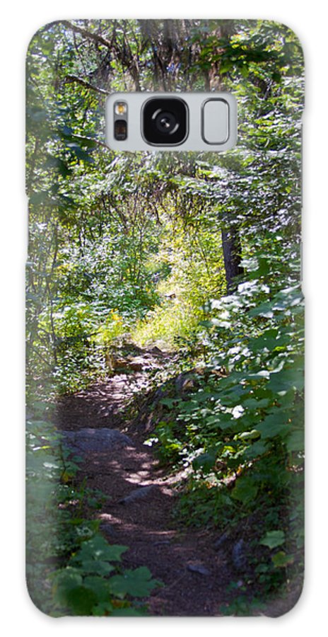 Kalispell Galaxy S8 Case featuring the photograph Priest Lake Trail Series IIi - Trail Shadows by David Patterson
