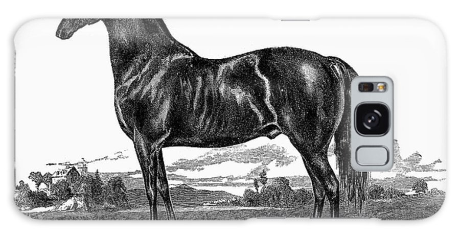 1857 Galaxy S8 Case featuring the photograph Prize Horse, 1857 by Granger