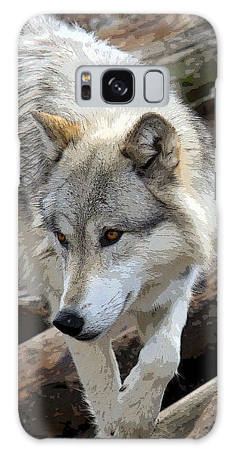 Grey Wolf Galaxy S8 Case featuring the photograph Prowling Wolf by Steve McKinzie