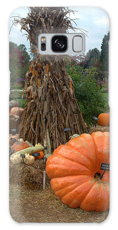 Pumpkins Galaxy S8 Case featuring the photograph Pumpins And Gourds by Mark Holden