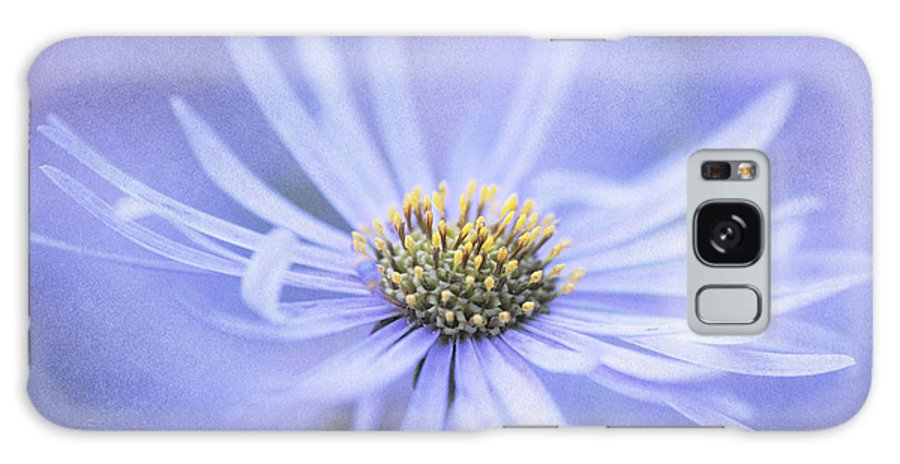 Flower Galaxy S8 Case featuring the photograph Purple Aster Flower by Neil Overy