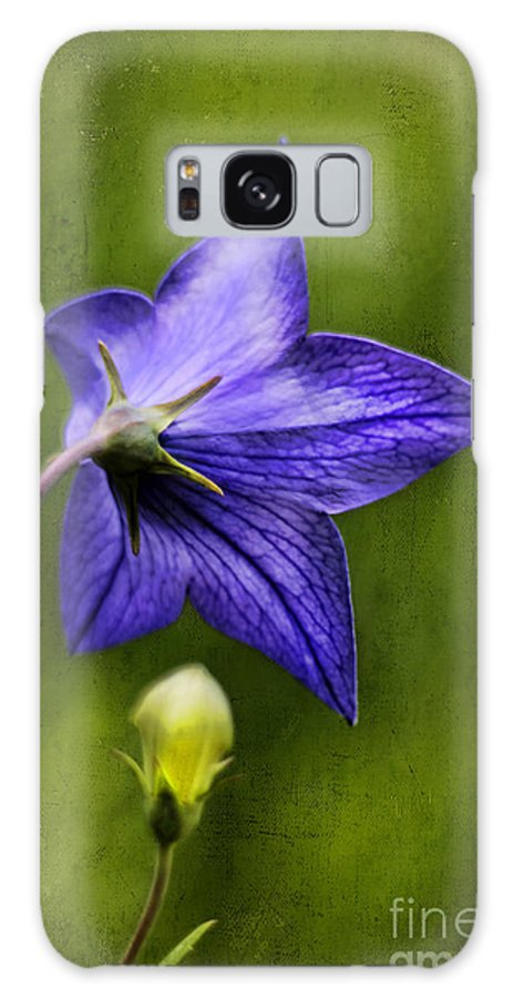 Beautiful Galaxy S8 Case featuring the photograph Purple Balloon Flower by Darren Fisher