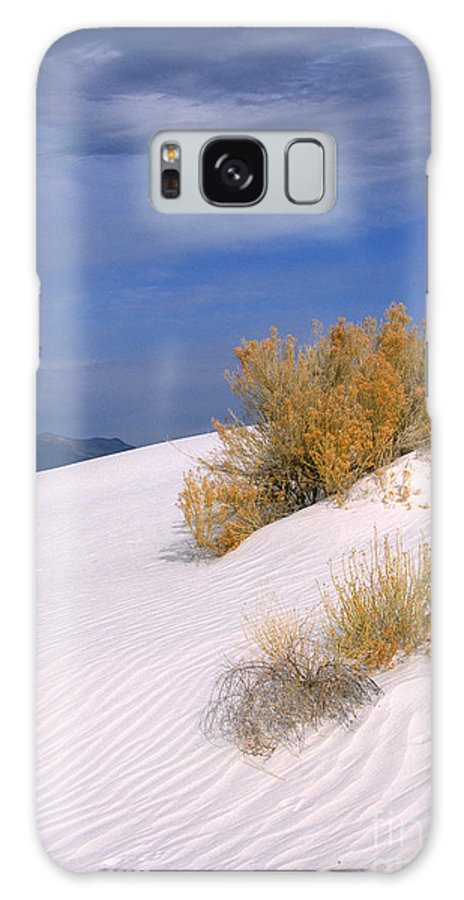 Sandra Bronstein Galaxy S8 Case featuring the photograph Windswept - White Sands National Monument by Sandra Bronstein
