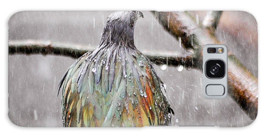 Bird Galaxy S8 Case featuring the photograph Rainbow Showers by Trish Tritz