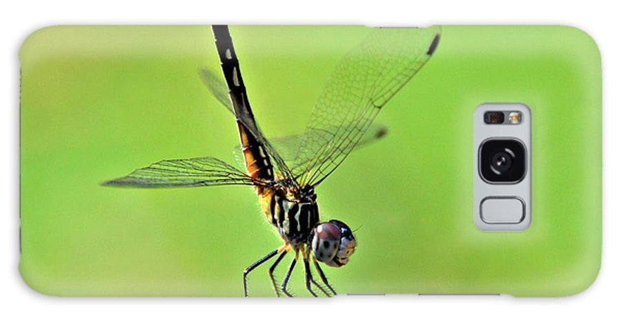 Dragonfly Galaxy S8 Case featuring the photograph Ready For Departure by Floyd Menezes