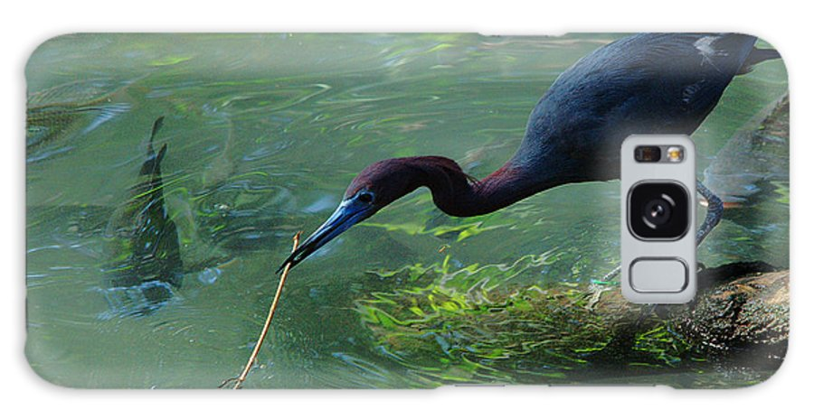 Heron Galaxy S8 Case featuring the photograph Really A Twig by Roy Williams