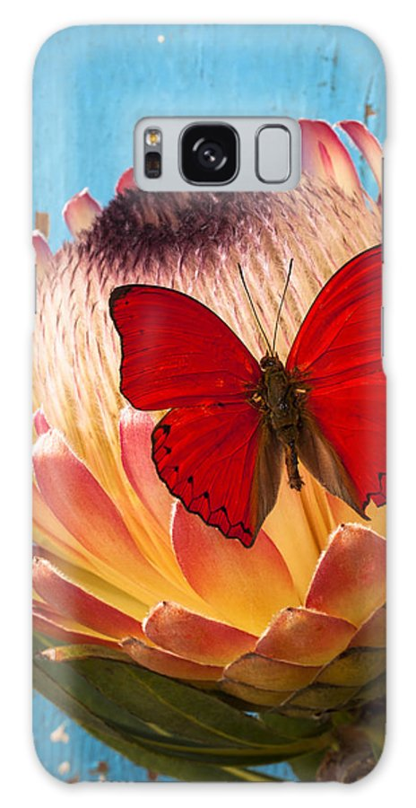 Protea Galaxy S8 Case featuring the photograph Red Butterfly On Protea by Garry Gay