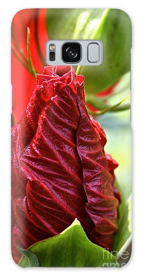 Outdoors Galaxy S8 Case featuring the photograph Red Hibiscus Torch by Susan Herber