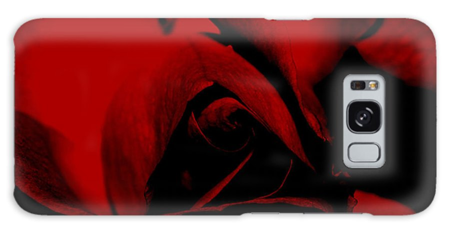 Nature Galaxy S8 Case featuring the photograph Red Rose Close Up 2011 In Red by Robert Morin
