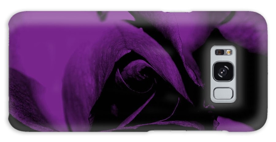 Nature Galaxy S8 Case featuring the photograph Red Rose Close Up 2011 In Violet by Robert Morin