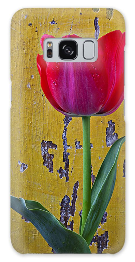 Red Galaxy S8 Case featuring the photograph Red Tulip With Yellow Wall by Garry Gay