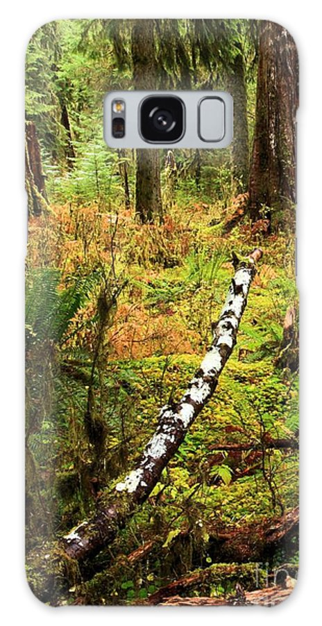 Hoh Rainforest Galaxy S8 Case featuring the photograph Regeneration by Adam Jewell