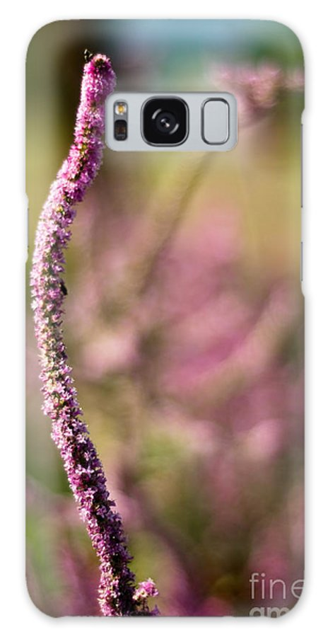 Flower Galaxy S8 Case featuring the photograph Rising Purple by Syed Aqueel