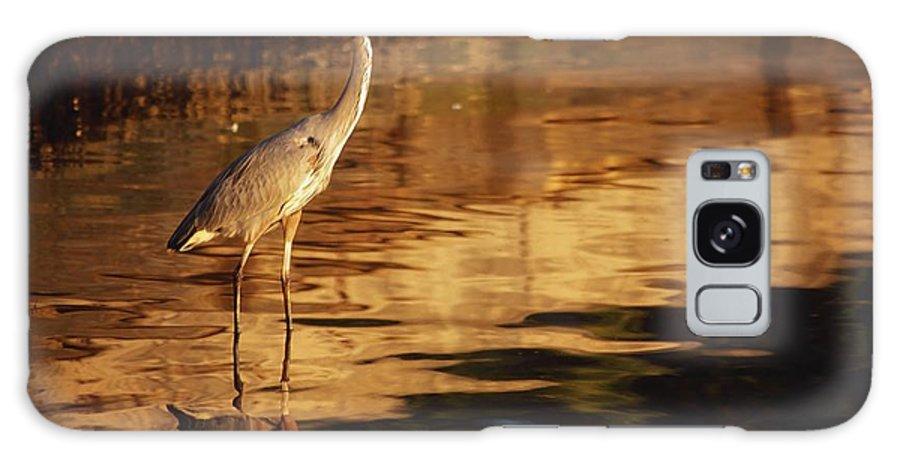 Bird Galaxy S8 Case featuring the photograph River Liffey, County Dublin, Ireland by Richard Cummins