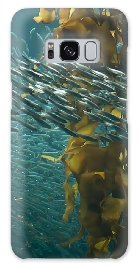 Seaweed Galaxy S8 Case featuring the photograph Rush Hour by Roger Mullenhour