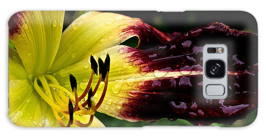 Floral Galaxy S8 Case featuring the photograph Scarlet Pimpernel by Susan Herber