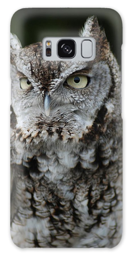 Raptor Galaxy S8 Case featuring the photograph Screech Owl by Richard Bryce and Family