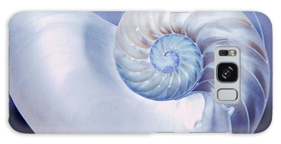 Seashell Galaxy S8 Case featuring the photograph Seashell. Blue Version by Jenny Rainbow