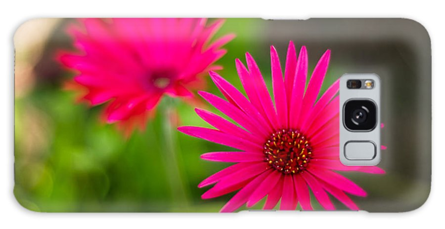 Flower Galaxy S8 Case featuring the photograph Shockingly Pink by Syed Aqueel