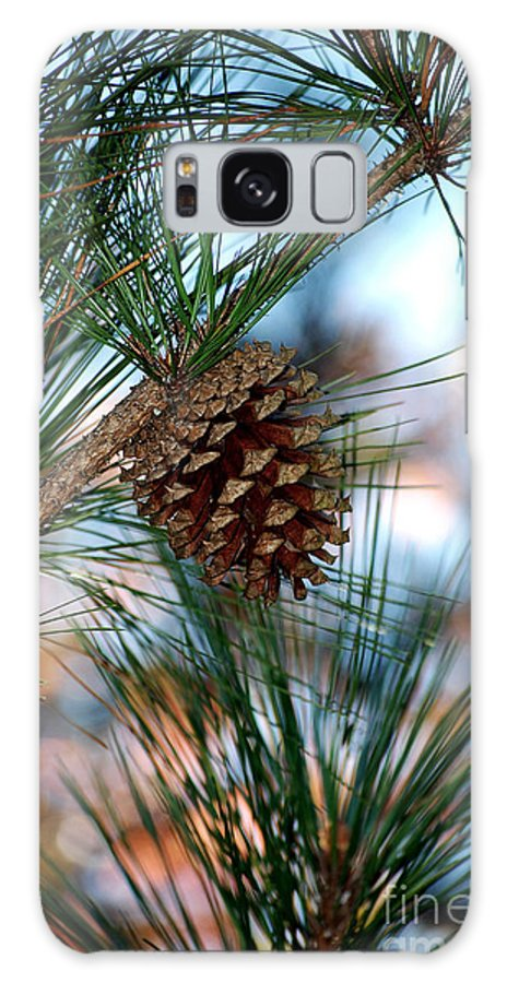 Pine Cone Galaxy S8 Case featuring the photograph Signs Of Fall by Robert Meanor