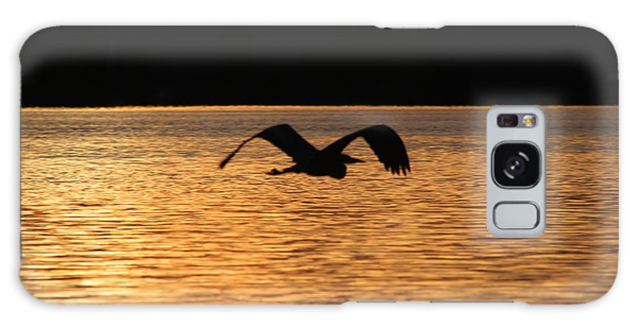 Blue Heron Galaxy S8 Case featuring the photograph Silouette On The Lake by Ericamaxine Price